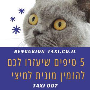 5 טיפים להזנת מונית לחיות מחמד